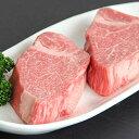 飛騨牛 希少部位 食べ比べ ギフト セット ヒレ&ランプ ステーキ 1,400g 1.4kg A5 A4 (各100g × 7枚) [送料無料] | 牛肉 結婚祝い 出産祝い 内祝い お返し プレゼント 二次会 景品 高級 ヒレ肉 シャトーブリアン 赤身 ステーキ肉 お歳暮 肉 早割 還暦祝い あす楽 2
