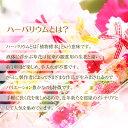 四つ葉とバラと和のハーバリウムハーバリウム 幸せの四つ葉のクローバー 選べる16種類 送料無料 ギフトラッピング無料 メッセージカード付き