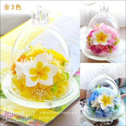 母の日 2021 プレゼント 花 誕生日 プリザーブドフラワー #プルメリアのガラスドーム〈S〉 arg 送料無料 花 ...