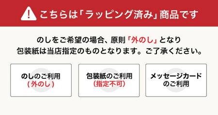 (チョコレート)レーマンチョコレートルーブリアン(RL-15)26個(メーカー包装済み)(A5)【チョコレートホワイトデー】【楽ギフ_