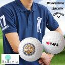 お名前入りオリジナルポロシャツ&名入れゴルフボールギフトセット [ 誕生日プレゼント 男性 イラスト お名前印刷 プレゼント お名前入りゴルフ 父の日 ]10P03Dec16