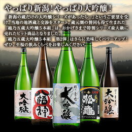 【51%OFF!】特割!越乃五蔵大吟醸飲みくらべ一升瓶5本組≪第2弾≫