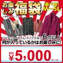 福袋 2019 M L LL 3L 4L 5L ミセス お楽しみ袋 税別5,000円 (M〜5L)  ...