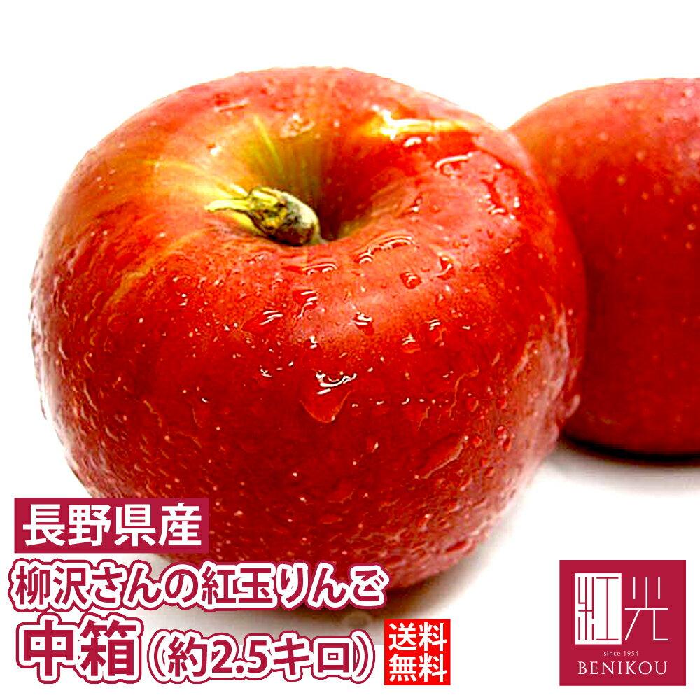 紅玉 りんご 柳沢さんの低農薬栽培 紅玉リンゴ 中箱 (約9〜14個入) 「北海道・沖縄は送料+1100円」 果物 フルーツ 林檎 アップルパイ 家庭用 贈答用 ギフト
