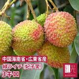 緑ライチ 妃子笑 3kg 生ライチ グリーンライチ 果物 フルーツ