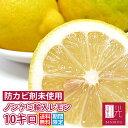 ノンケミレモン 【送料無料】 ノンケミカル輸入レモン 10.0kg (サイズに大小あり) (約65−90個入り) 「北海道・沖縄は+540円」 レモン 柑橘 果物 フルーツ