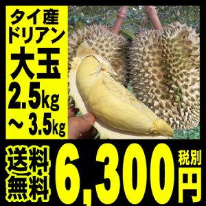 ドリアン 2.5〜3.5kg