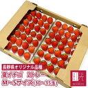 長野産 夏いちご 0.6キロ M〜Sサイズ (30〜35粒)