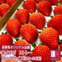 長野産 夏いちご 0.6キロ 2L〜Lサイズ (20〜24粒