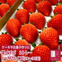 国産 夏いちご 0.6kg L〜Mサイズ (24〜30粒) ...