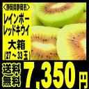 キウイフルーツの新品種!レインボーキウイ、激甘です!【送料無料】静岡産レインボーレッドキ...