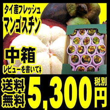 マンゴスチン【予約受付】 タイ産 フレッシュ(生) マンゴスチン 中箱 (約14〜20個入り)一番品質が良い農園のものにこだわって「北海道・沖縄は+540円」