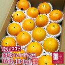 激甘 大玉 ネーブル バレンシア オレンジ 16玉 約4kg