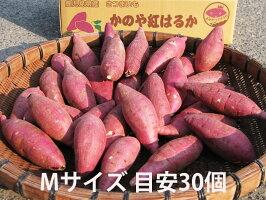 鹿児島のさつまいも「べにはるか」5kgサイズが選べる送料無料商品M/L熟成紅はるか