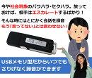 超小型USB型ワンタッチ簡単ボイスレコーダー4GBWin7/8/8.1対応送料無料ギフトプレゼント会議講義録音軽量クリアレコーダーれこーだー防犯スパイ長時間高音質ic
