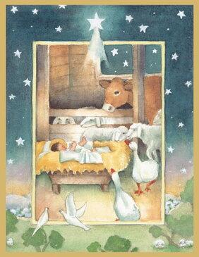 【クリスマスカード グリーディングカード 輸入カード 】アメリカ Caspari(カスパリ)定型サイズ 封筒付き クリスマスカード ネイテイビティ