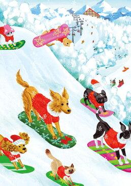 【クリスマスカード グリーディングカード 輸入カード 】アメリカ Caspari(カスパリ)定型サイズ 封筒付き スノーボード