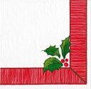 カスパリ ペーパーナプキン クリスマス デコパージュ ペーパーナプキン おしゃれ ホームパーティー 北欧 好きにも 紙ナプキン ランチサイズ ドイツ ペーパーナプキン素敵 可愛い 女子会 誕生日 パーティー 高品質 ラッピング BBQ 20枚入 33x33cm