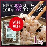 【送料無料】国内産紫もち麦1kg<ベストアメニティ>