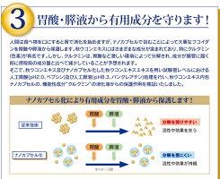 フコイダンライフ・ナノ(顆粒1.2g×60包)ナノカプセル化フコイダン(ナノフコイダン)配合!フコイダンエキス低分子でなく高分子送料無料