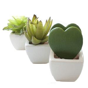 商品到着後レビューを書いて3%OFF!気軽に飾れるかわいいリーフ! リトルハート植物3点セット ...