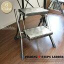 クールヴィンテージ♪ Folding 2-steps ladder 100-271脚立・梯子・ハシゴ・ステップスツール DULTON'S(ダルトン) 全7色(Yellow/Ivory/Red/Brown/HammertoneGray/Raw/Galvanized)
