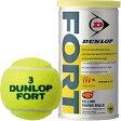 【あす楽対象】 ダンロップ プレッシャーライズド テニスボール FORT(2個入り) DFDYL2TIN
