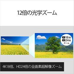 【送料無料】ソニーメモリースティック/SD対応4KビデオカメラFDR-AX100[FDRAX100BC]