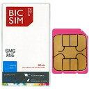 IIJ BIC SIMウェルカムパック [データ用]SMS対応マイクロSIM ※返品・交換不可