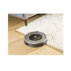 【送料無料】iRobot【国内正規品】ロボット掃除機「ルンバ」876