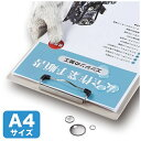 サンワサプライ SANWA SUPPLY カラーレーザー用耐水紙(中厚)[カラーレーザー /A4サイズ /50枚] LBP-WPF15MDP[LBPWPF15MDP]