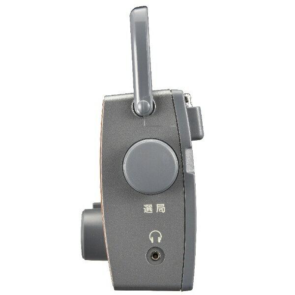 オーム電機(OHM) AM/FMポータブル木目調ラジオ RAD-T787Z 木目調