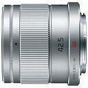 パナソニックPanasonic カメラレンズLUMIX G 42.5mm/F1.7 ASPH./POWER O.I.S.【マイクロフォーサーズマウント】(シルバー)[HHS043] panasonic