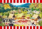 エイベックス・エンタテインメント Avex Entertainment 舞祭組/ 舞祭組村のわっと!驚く!第1笑 初回盤【DVD】