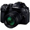 パナソニック Panasonic DC-G99H-K ミラーレス一眼カメラ 高倍率ズームレンズキット LUMIX G99 ブラック [ズームレンズ][DCG99HK]