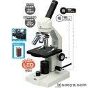 生物顕微鏡 EC400/600(簡易メカニカルステージ・木箱大付タイプ) あす楽対象 送料無料[メール便不可](顕微鏡 ステージ上下顕微鏡 夏休み 自由研究 理科 実験キット マイクロスコープ)