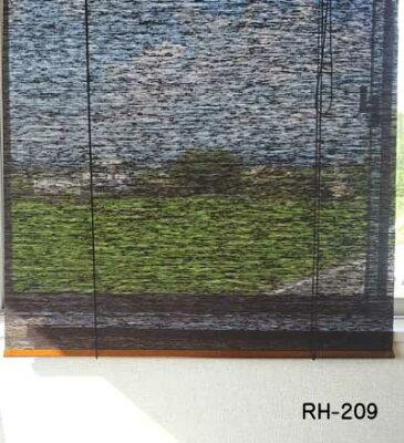 RH-209使用イメージ
