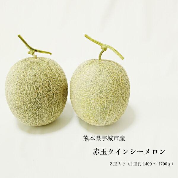 熊本県産 クインシーメロン 赤肉 2玉 ギフト用