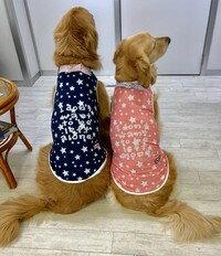 D's CHAT ディーズチャット バンダナクールタンクトップ ピンク OL 大型犬