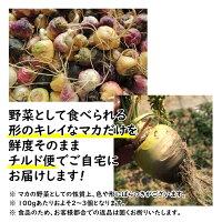 日本産・無農薬のスーパーフード「生マカ」100gアルギニンベンジルグルコシノレート数量限定薬味香辛料スパイス野菜アブラナ科サプリメント