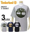 大きいサイズ メンズ Timberland(ティンバーランド) ロゴプリント Tシャツ 半袖 XXL 3XL【コンビニ受取対応商品】