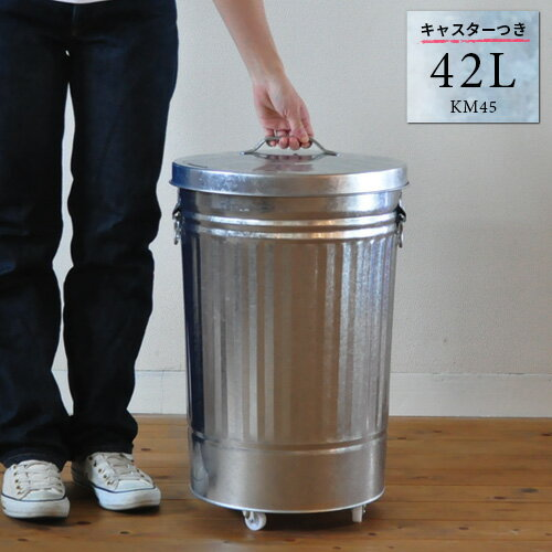 トタン バケツ 42L キャスター付き ふた付き ダストボックス ゴミ箱 ごみ箱 日本製 42リットル 大容量 大型 シルバー 金属製 国産 ペットフード入れ ドッグフード入れ キャットフード入れ 保存 ストッカー 送料無料