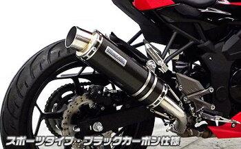 Ninja250SL(ニンジャ250SL)スリップオンマフラースポーツタイプブラックカーボン仕様ウイルズウィン(WirusWin)