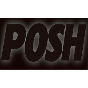 ポッシュ554001-FRGPZ1000RXEARL