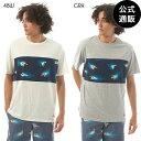 【SALE】2019 エレメント メンズ HOFFMAN PANEL SS Tシャツ 【HOFFMAN FABRICS COLLECTION】 全2色 M/L/XL ELEMENT