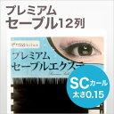 P-sable_sc015
