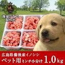猪肉 ペット用ミンチ小分け(1kg) 広島県産 備後地方 いのしし肉 イノシシ肉 最高級 ジビエ料理 お取り寄せ 人気 ペットフード 犬 イヌ 猫 ネコ