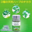 【送料無料】桑の葉・オリーブ葉・ヤーコン葉の3種の天然ハーブのチカラで、しっかり糖対策!ハーブスカット