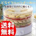 ドライフルーツメーカー 乾燥フルーツ ドライフルーツマシン 野菜乾燥機 果物乾燥機 干し野菜 ...