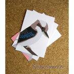 ポストカード ワライカワセミAUS直輸入☆Australian Bird Graphic Card 【インコ・鳥・雑貨・グッズ】